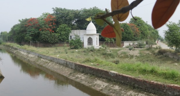 A temple dedicated to an idol found buried near the vipassana centre