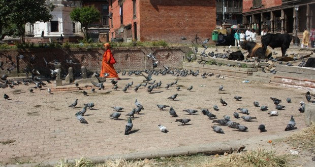 Outside Pashupatinath