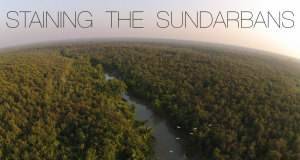 "Sundarbans, which literally translates as ""beautiful forest"", straddles the border between India and Bangladesh along the eastern Indian state of West Bengal. India has 40% and Bangladesh has 60% of the mangroves. Both areas are designated wildlife sanctuaries and reserve forests."