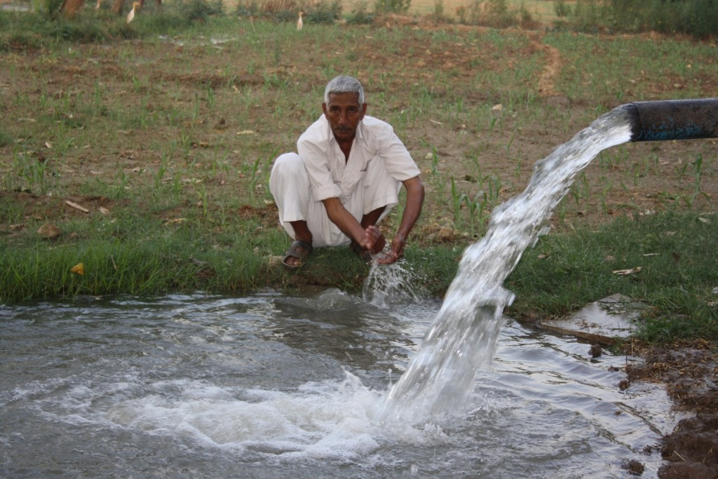 Mahesh Chander Sharma, farmer from Ghodi3